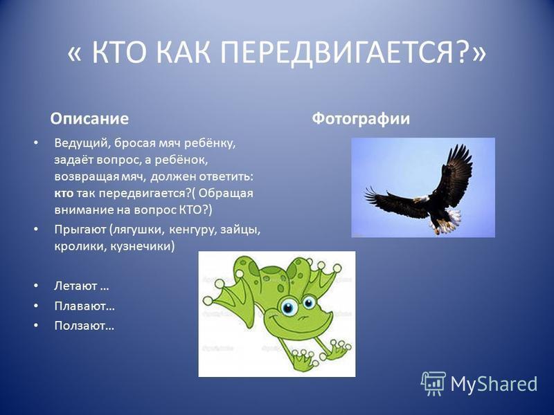 « КТО КАК ПЕРЕДВИГАЕТСЯ?» Описание Ведущий, бросая мяч ребёнку, задаёт вопрос, а ребёнок, возвращая мяч, должен ответить: кто так передвигается?( Обращая внимание на вопрос КТО?) Прыгают (лягушки, кенгуру, зайцы, кролики, кузнечики) Летают … Плавают…
