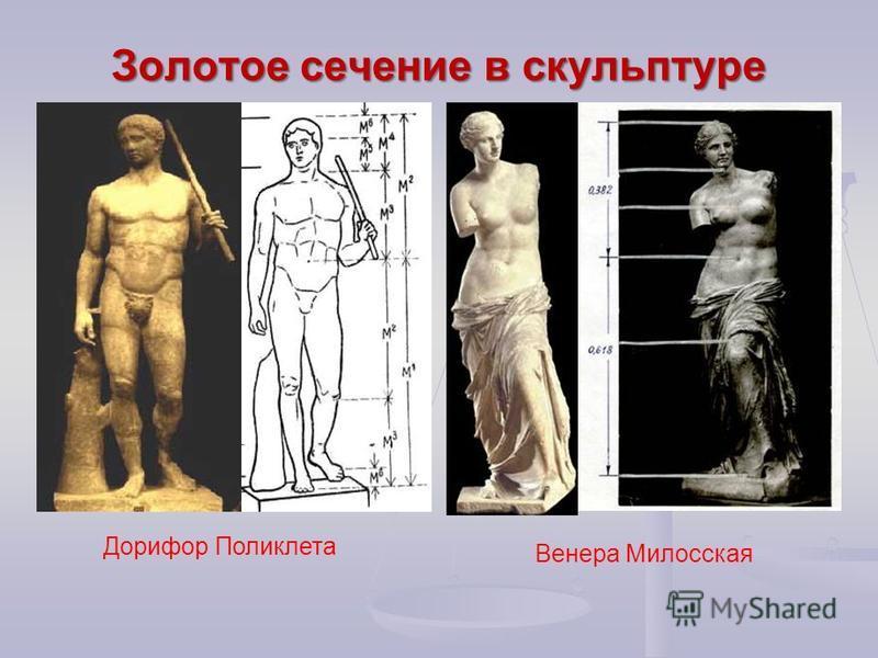 Золотое сечение в скульптуре Венера Милосская Дорифор Поликлета