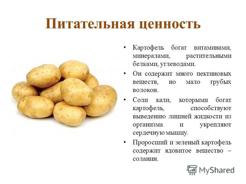 Питательная ценность Картофель богат витаминами, минералами, растительными белками, углеводами. Он содержит много пектиновых веществ, но мало грубых волокон. Соли кали, которыми богат картофель, способствуют выведению лишней жидкости из организма и у