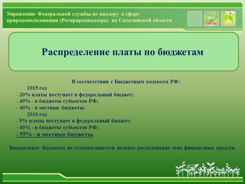 www.themegallery.com Распределение платы по бюджетам В соответствии с Бюджетным кодексом РФ: 2015 год - 20% платы поступает в федеральный бюджет; - 40% - в бюджеты субъектов РФ; - 40% - в местные бюджеты. 2016 год - 5% платы поступает в федеральный б