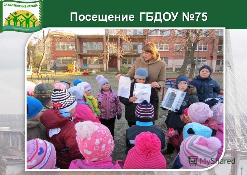 Посещение ГБДОУ 75