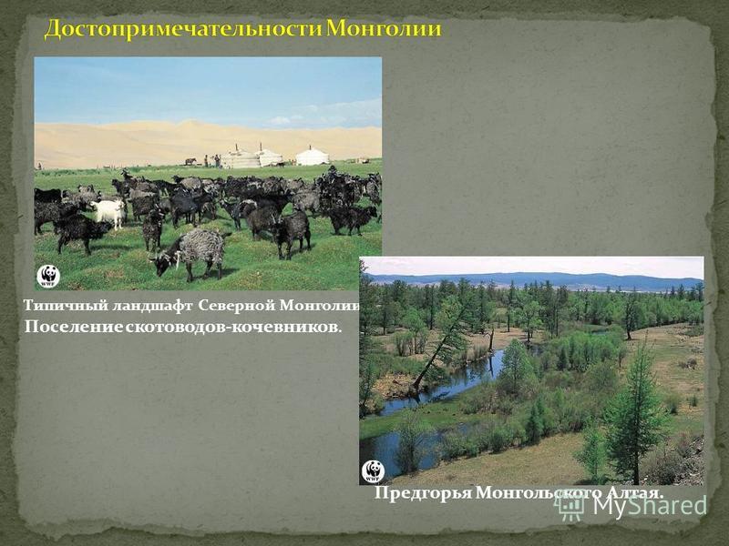 Типичный ландшафт Северной Монголии. Поселение скотоводов-кочевников. Предгорья Монгольского Алтая.