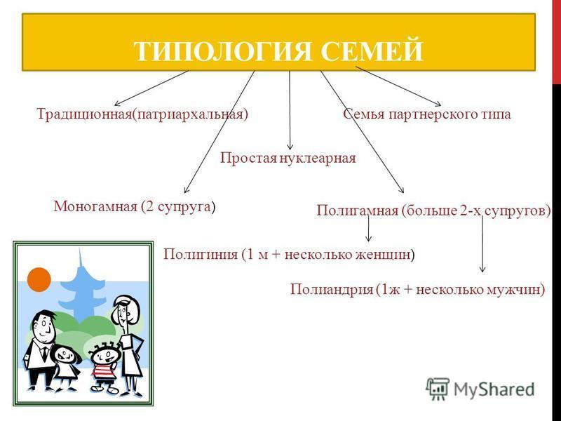 ТИПОЛОГИЯ СЕМЕЙ Традиционная(патриархальная)Семья партнерского типа Простая нуклеарная Моногамная (2 супруга ) Полигамная (больше 2-х супругов) Полигиния (1 м + несколько женщин ) Полиандрия (1 ж + несколько мужчин)