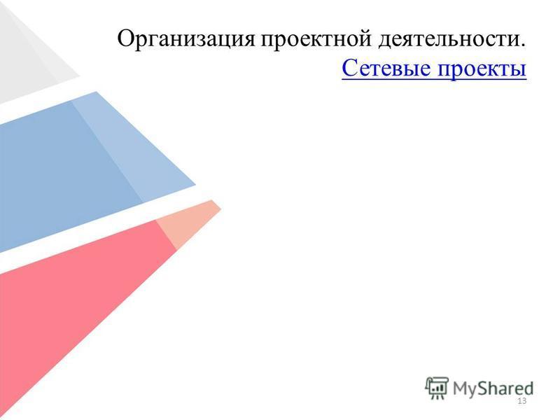 Организация проектной деятельности. Сетевые проекты Сетевые проекты 13