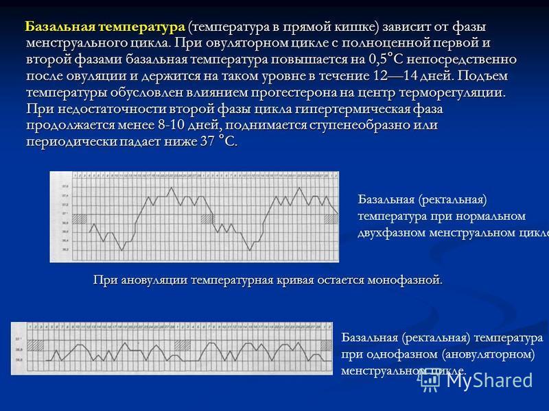 Базальная температура (температура в прямой кишке) зависит от фазы менструального цикла. При овуляторном цикле с полноценной первой и второй фазами базальная температура повышается на 0,5°С непосредственно после овуляции и держится на таком уровне в