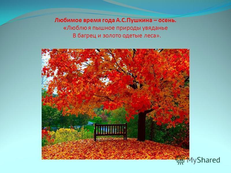 Любимое время года А.С.Пушкина – осень. «Люблю я пышное природы увяданье В багрец и золото одетые леса».