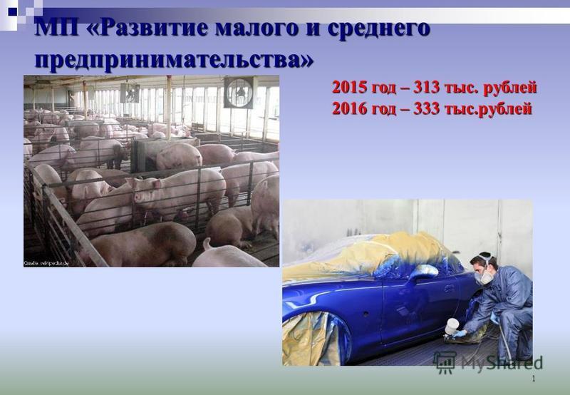 1 МП «Развитие малого и среднего предпринимательства» 2015 год – 313 тыс. рублей 2016 год – 333 тыс.рублей