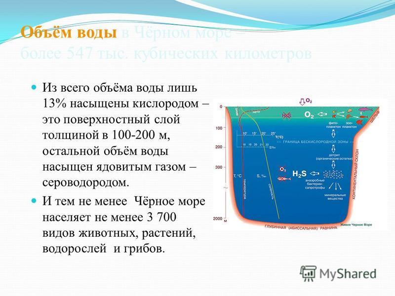 Объём воды в Чёрном море – более 547 тыс. кубических километров Из всего объёма воды лишь 13% насыщены кислородом – это поверхностный слой толщиной в 100-200 м, остальной объём воды насыщен ядовитым газом – сероводородом. И тем не менее Чёрное море н