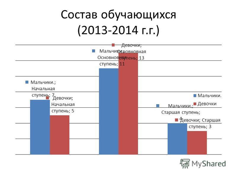 Состав обучающихся (2013-2014 г.г.)