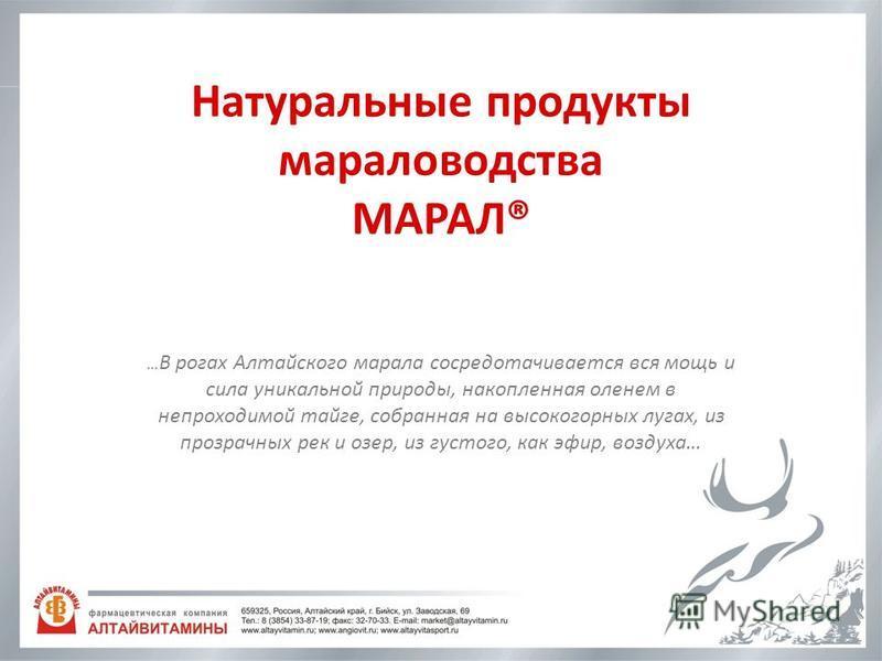 Натуральные продукты мараловодства МАРАЛ® … В рогах Алтайского марала сосредотачивается вся мощь и сила уникальной природы, накопленная оленем в непроходимой тайге, собранная на высокогорных лугах, из прозрачных рек и озер, из густого, как эфир, возд