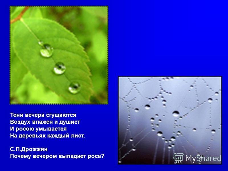 Тени вечера сгущаются Воздух влажен и душист И росою умывается На деревьях каждый лист. С.П.Дрожжин Почему вечером выпадает роса?