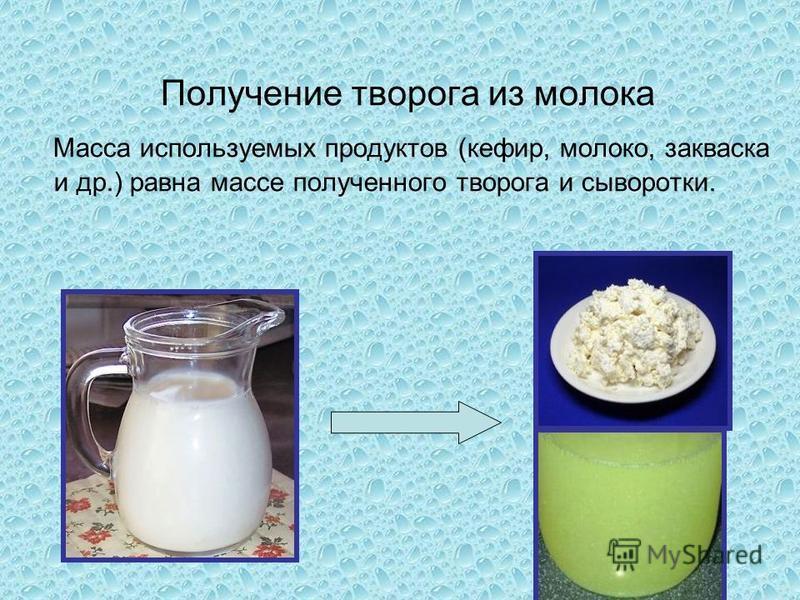 Получение творога из молока Масса используемых продуктов (кефир, молоко, закваска и др.) равна массе полученного творога и сыворотки.