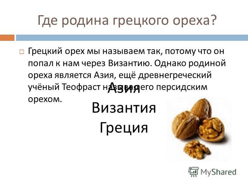 Где родина грецкого ореха ? Грецкий орех мы называем так, потому что он попал к нам через Византию. Однако родиной ореха является Азия, ещё древнегреческий учёный Теофраст называл его персидским орехом. Азия Византия Греция