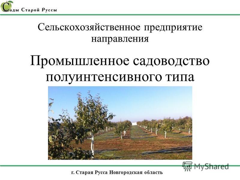 Cельскохозяйственное предприятие направления Промышленное садоводство полуинтенсивного типа г. Старая Русса Новгородская область
