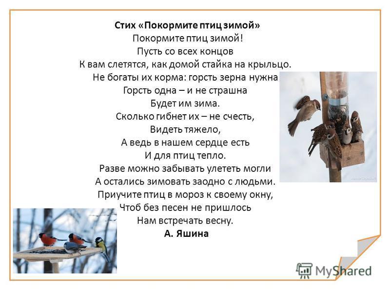 Стих «Покормите птиц зимой» Покормите птиц зимой! Пусть со всех концов К вам слетятся, как домой стайка на крыльцо. Не богаты их корма: горсть зерна нужна Горсть одна – и не страшна Будет им зима. Сколько гибнет их – не счесть, Видеть тяжело, А ведь