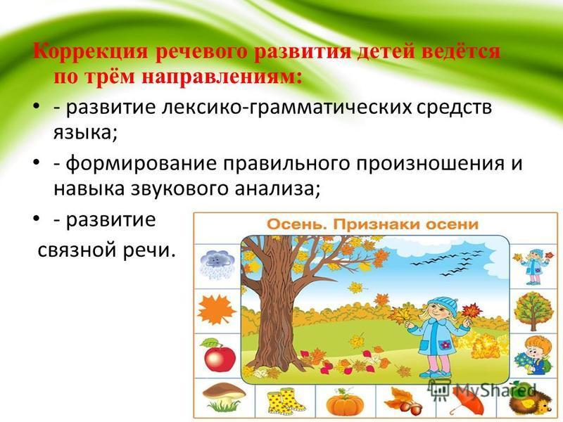 Коррекция речевого развития детей ведётся по трём направлениям: - развитие лексико-грамматических средств языка; - формирование правильного произношения и навыка звукового анализа; - развитие связной речи.