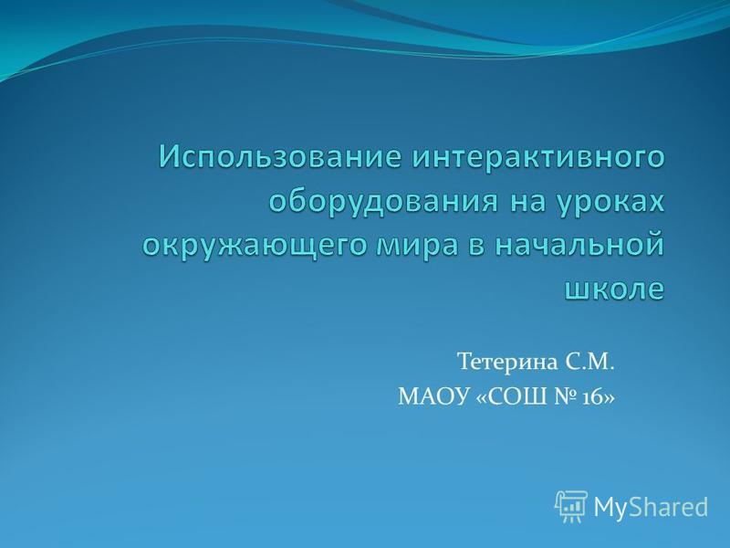 Тетерина С.М. МАОУ «СОШ 16»