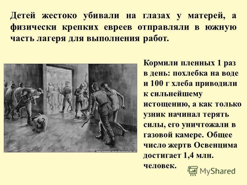 Детей жестоко убивали на глазах у матерей, а физически крепких евреев отправляли в южную часть лагеря для выполнения работ. Кормили пленных 1 раз в день: похлебка на воде и 100 г хлеба приводили к сильнейшему истощению, а как только узник начинал тер