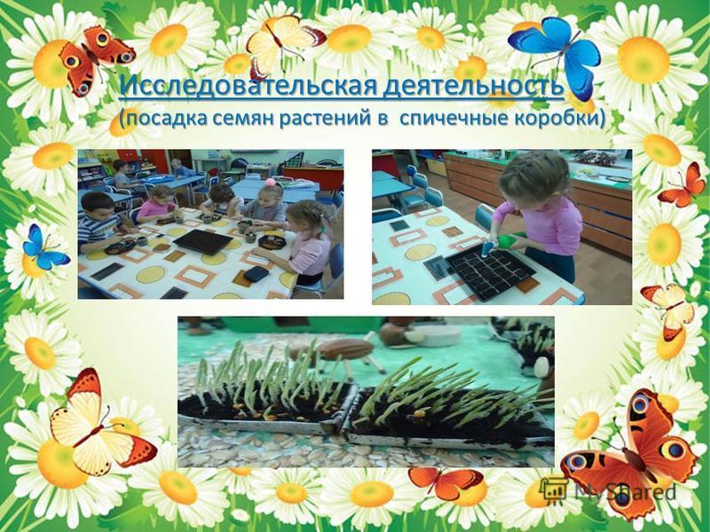 Исследовательская деятельность (посадка семян растений в спичечные коробки)