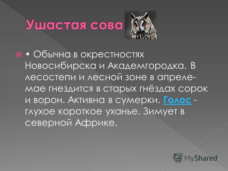 Обычна в окрестностях Новосибирска и Академгородка. В лесостепи и лесной зоне в апреле- мае гнездится в старых гнёздах сорок и ворон. Активна в сумерки. Голос - глухое короткое уханье. Зимует в северной Африке. Голос