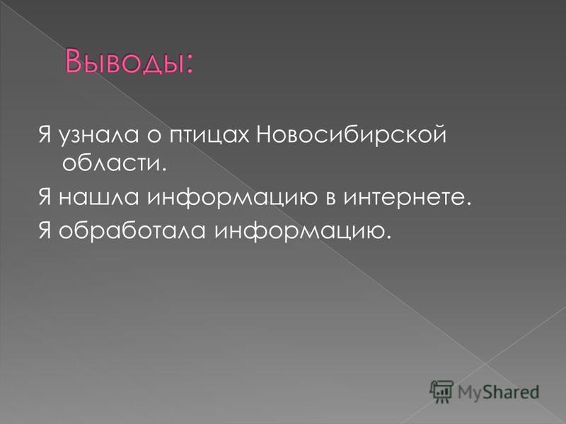 Я узнала о птицах Новосибирской области. Я нашла информацию в интернете. Я обработала информацию.