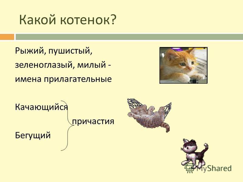 Какой котенок? Рыжий, пушистый, зеленоглазый, милый - имена прилагательные Качающийся причастия Бегущий