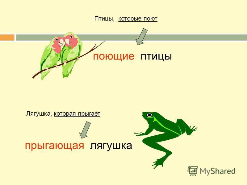 Птицы, которые поют поющие птицы Лягушка, которая прыгает прыгающая лягушка