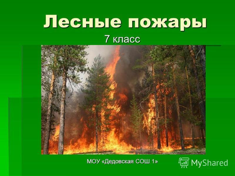 Лесные пожары МОУ «Дедовская СОШ 1» 7 класс