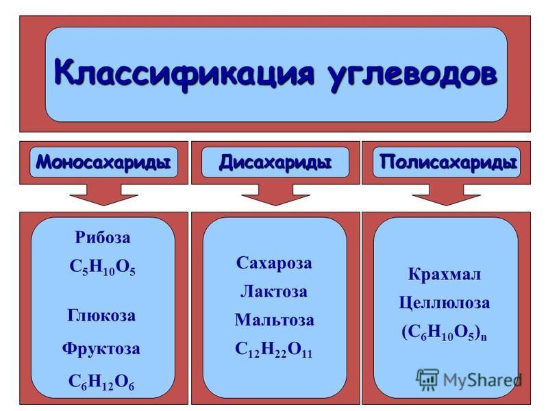 Классификация углеводов Моносахариты Дисахариты Полисахариты Рибоза С 5 Н 10 О 5 Глюкоза Фруктоза С 6 Н 12 О 6 Сахароза Лактоза Мальтоза С 12 Н 22 О 11 Крахмал Целлюлоза (С 6 Н 10 О 5 ) n
