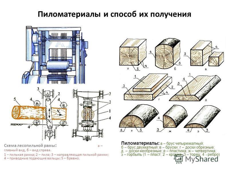 Пиломатериалы и способ их получения Схема лесопильной рамы : а – главный вид, б – вид справа. 1 – пильная рамка; 2 – пила; 3 – направляющая пильной рамки; 4 – приводные подающие вальцы; 5 – бревно. Пиломатериалы: а – брус четырехкратный; б – брус дву