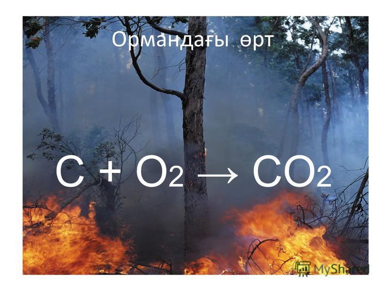 Ормандағы өрт C + O 2 CO 2