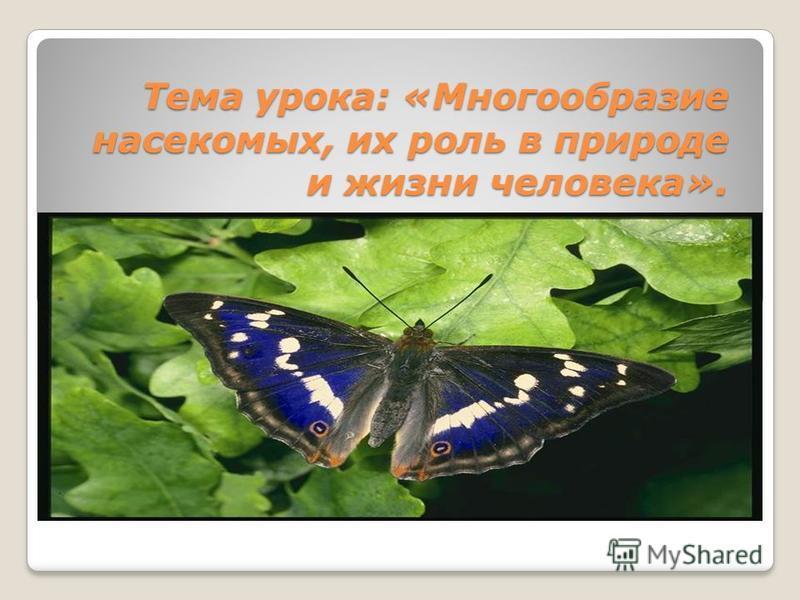 Тема урока: «Многообразие насекомых, их роль в природе и жизни человека».