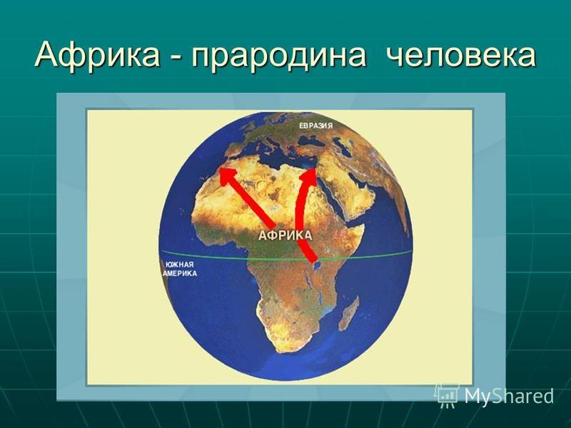 Африка - прародина человека