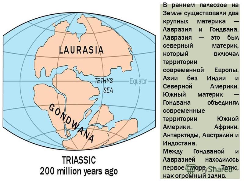 В раннем палеозое на Земле существовали два крупных материка Лавразия и Гондвана. Лавразия это был северный материк, который включал территории современной Европы, Азии без Индии и Северной Америки. Южный материк Гондвана объединял современные террит