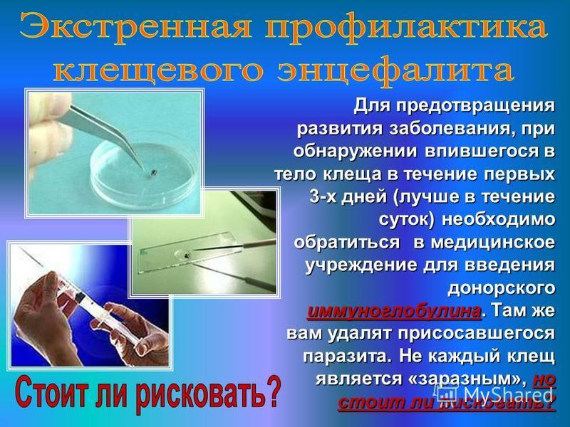 Для предотвращения развития заболевания, при обнаружении впившегося в тело клеща в течение первых 3-х дней (лучше в течение суток) необходимо обратиться в медицинское учреждение для введения донорского иммуноглобулина. Там же вам удалят присосавшегос