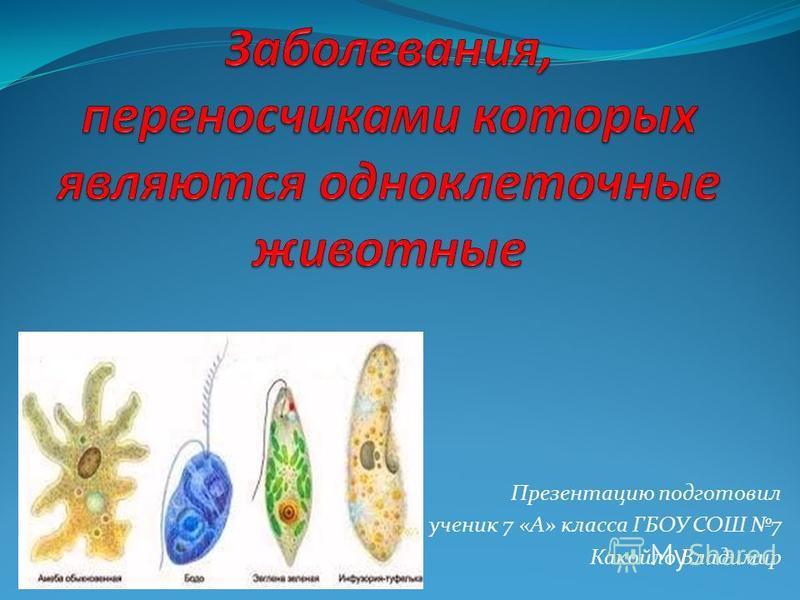 Презентацию подготовил ученик 7 «А» класса ГБОУ СОШ 7 Какойло Владимир