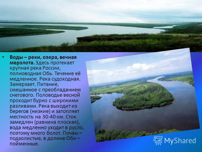 Воды – реки, озера, вечная мерзлота. Здесь протекает крупная река России, полноводная Обь. Течение её медленное. Река судоходная. Замерзает. Питание, смешанное с преобладанием снегового. Половодье весной проходит бурно с широкими разливами. Река выхо