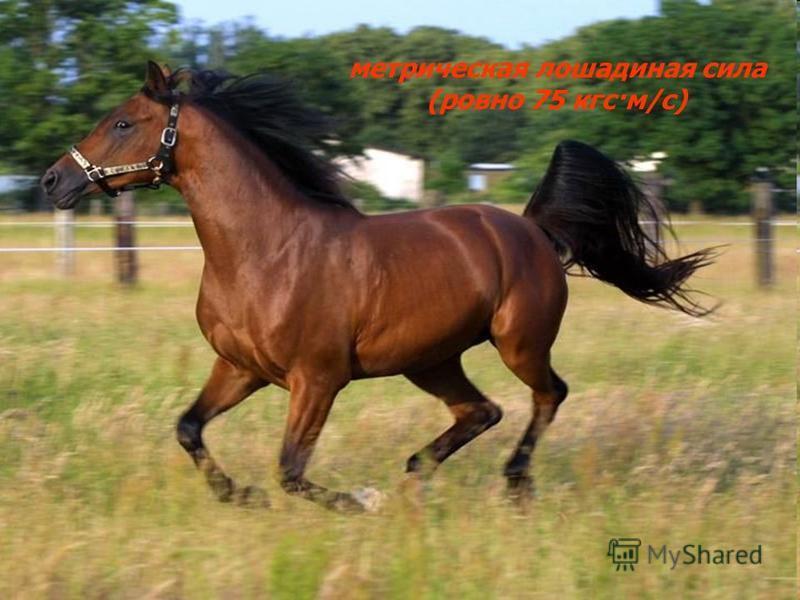 метрическая лошадиная сила (ровно 75 кгс·м/с)