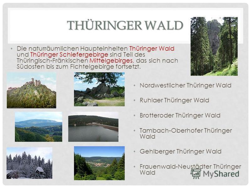 THÜRINGERWALD THÜRINGER WALD Die naturräumlichen Haupteinheiten Thüringer Wald und Thüringer Schiefergebirge sind Teil des Thüringisch-Fränkischen Mittelgebirges, das sich nach Südosten bis zum Fichtelgebirge fortsetzt. Nordwestlicher Thüringer Wald
