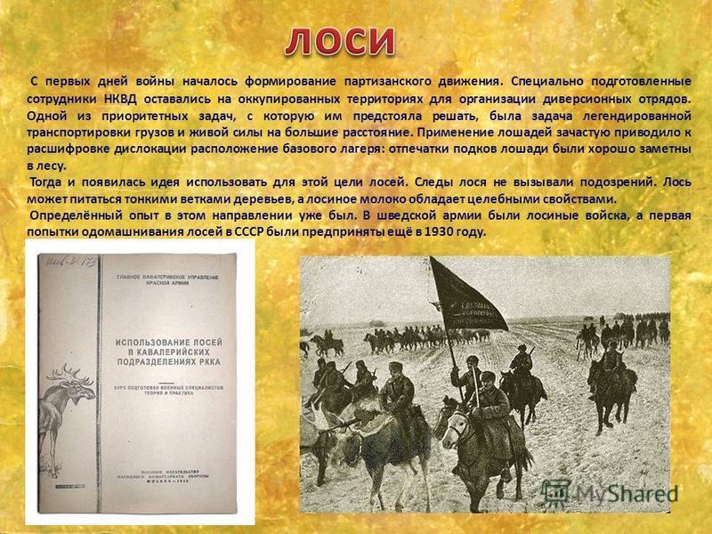 С первых дней войны началось формирование партизанского движения. Специально подготовленные сотрудники НКВД оставались на оккупированных территориях для организации диверсионных отрядов. Одной из приоритетных задач, с которую им предстояла решать, бы