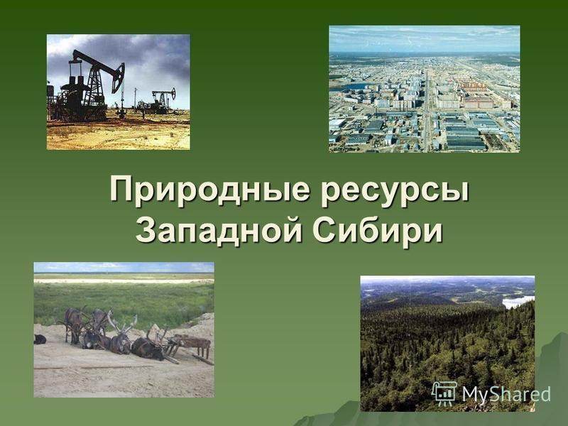Природные ресурсы Западной Сибири