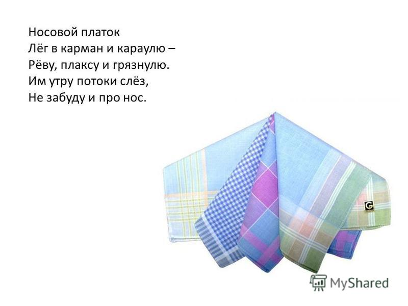 Носовой платок Лёг в карман и караулю – Рёву, плаксу и грязнулю. Им утру потоки слёз, Не забуду и про нос.