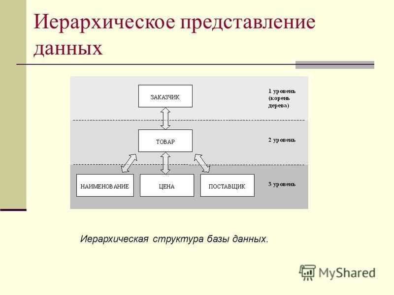 Иерархическое представление данных Иерархическая структура базы данных.