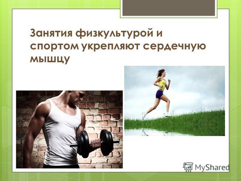 Занятия физкультурой и спортом укрепляют сердечную мышцу