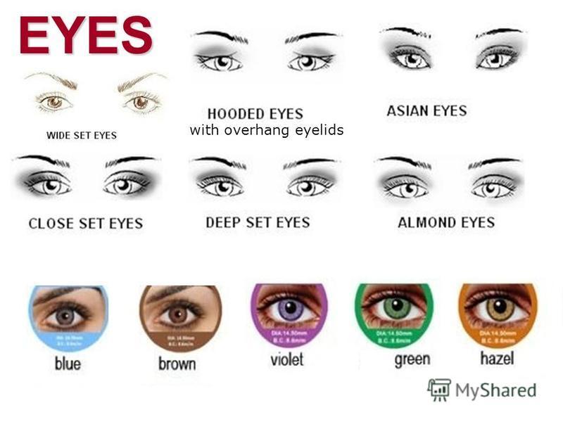 EYES Wide-Set/Close-Set / deep-set with overhang eyelids