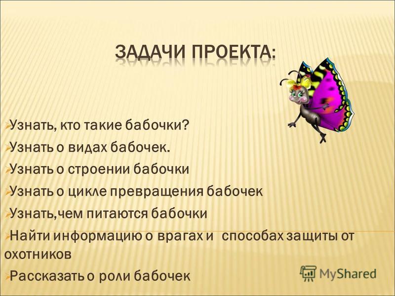 Узнать, кто такие бабочки? Узнать о видах бабочек. Узнать о строении бабочки Узнать о цикле превращения бабочек Узнать,чем питаются бабочки Найти информацию о врагах и способах защиты от охотников Рассказать о роли бабочек