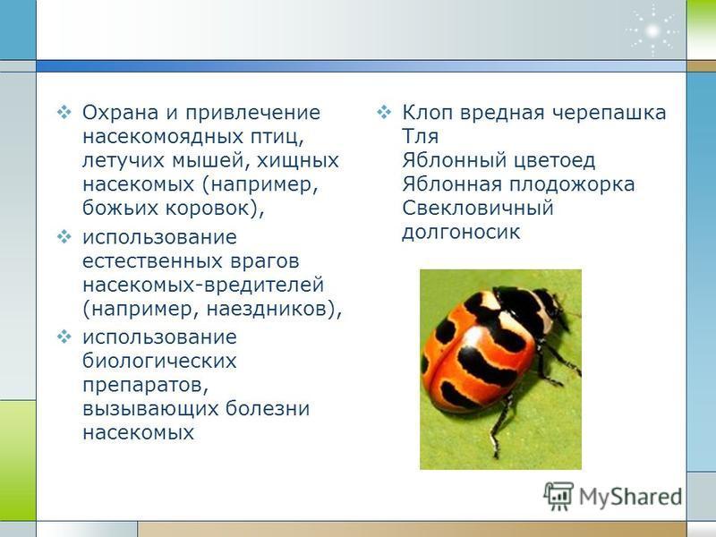 Охрана и привлечение насекомоядных птиц, летучих мышей, хищных насекомых (например, божьих коровок), использование естественных врагов насекомых-вредителей (например, наездников), использование биологических препаратов, вызывающих болезни насекомых К