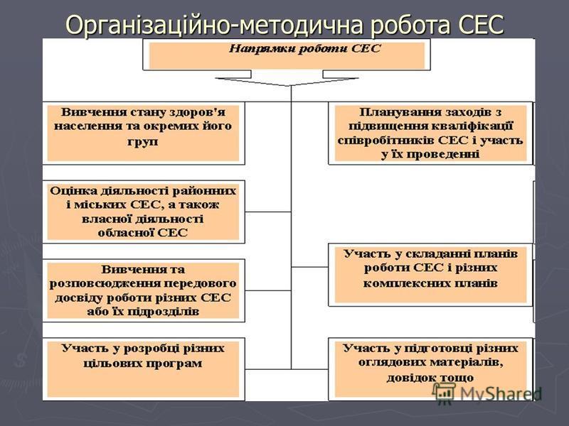 Організаційно-методична робота СЕС