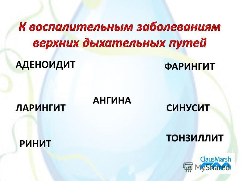 ТОНЗИЛЛИТ РИНИТ ЛАРИНГИТ АНГИНА СИНУСИТ ФАРИНГИТ АДЕНОИДИТ
