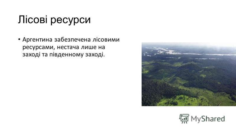 Лісові ресурси Аргентина забезпечена лісовими ресурсами, нестача лише на заході та південному заході.